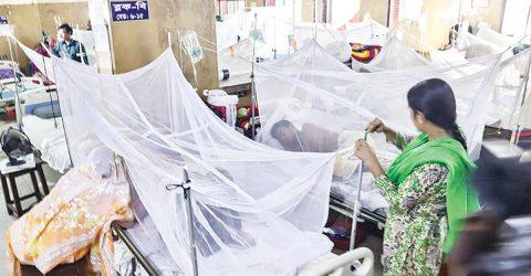 ২৪ ঘণ্টায় আরও ১৭০ ডেঙ্গু রোগী হাসপাতালে